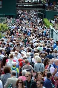 Spectator sport #wimbledonworthy