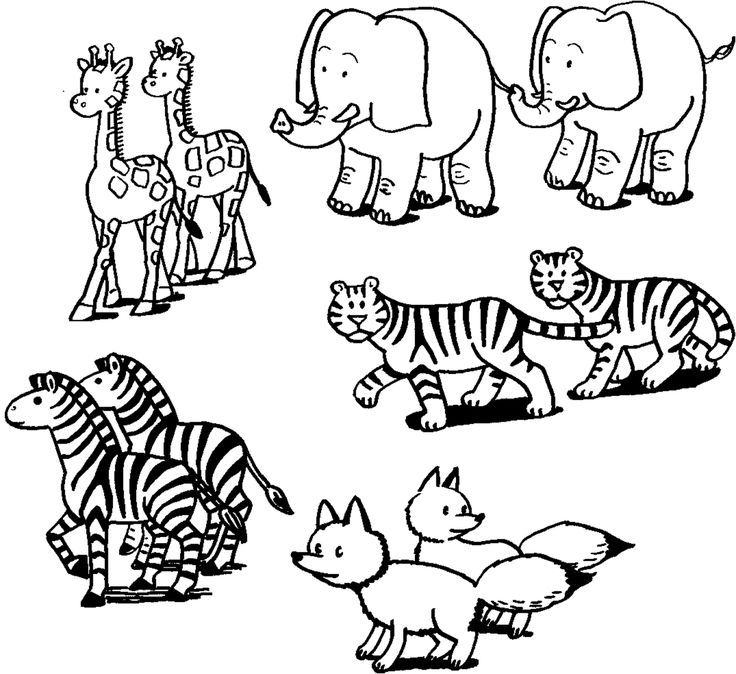 image result for pairs of animals for noah's ark  noahs