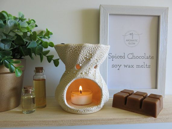 Spiced Chocolate Fragrance Wax Melts Soy Wax Melts