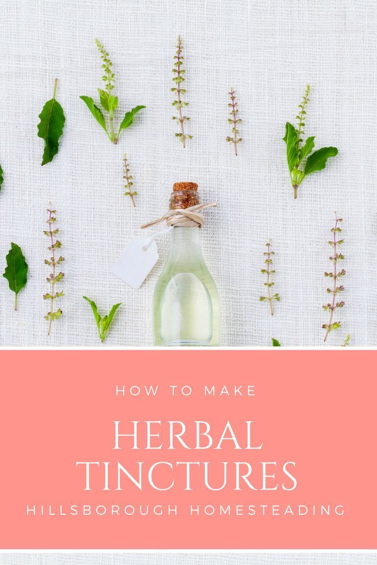 How to Make an Herbal Tincture   HBN: Homestead Health