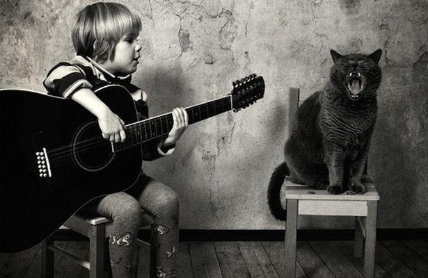 Divertidas fotos que relatam um amor incondicional entre uma garotinha e um gato
