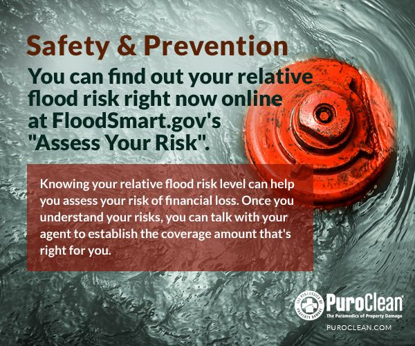 Best 25+ Flood risk assessment ideas on Pinterest Water - risk assessment