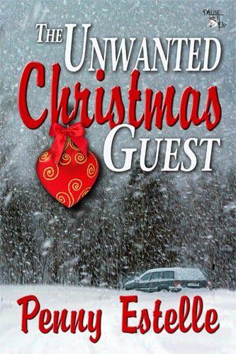 A Christmas Guest Christmas Novellas
