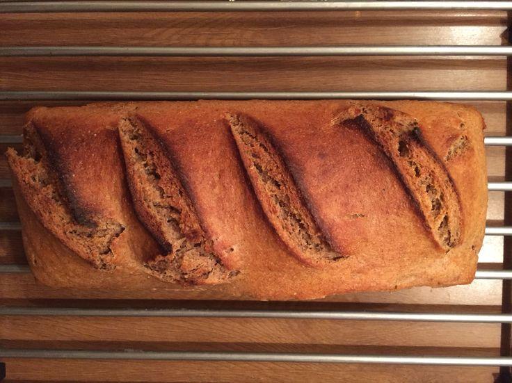 Home made rye bread