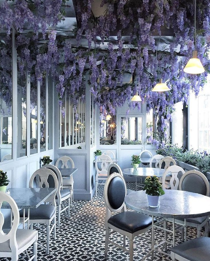 My favourite wisteria at Aubaine in Selfridges