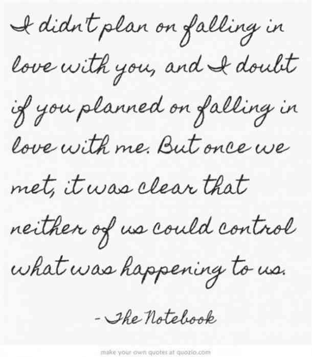 """""""I didn't plan on falling in love with you ... but once we met, it was clear that neither of us could control what was happening to us."""" — The Notebook"""