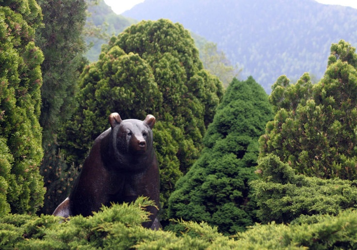 L'ours brun by GUYOT in Luchon, France