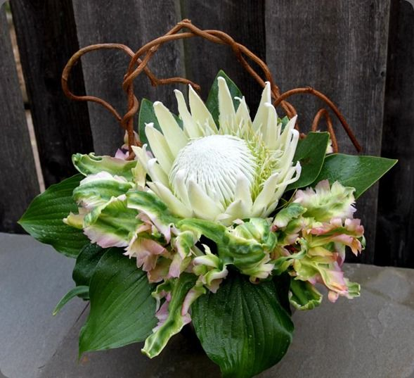 30 best images about petite blomme rangskikings on for King protea flower arrangements