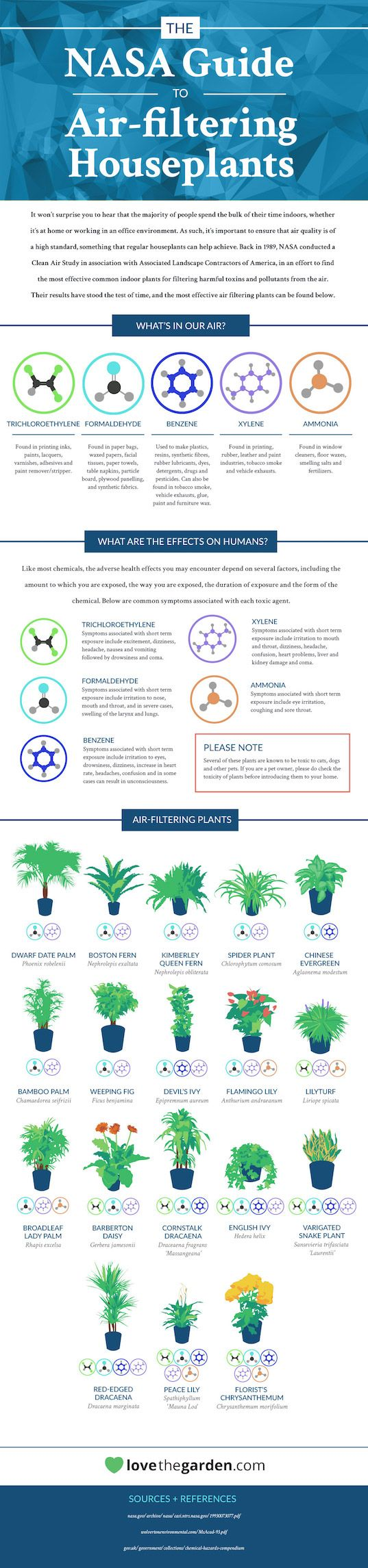 INFOGRAPHIC: Top 18 houseplants for purifying the air you breathe, according to…