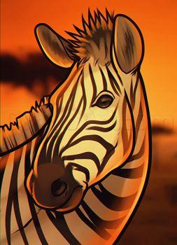 how to draw a zebra head