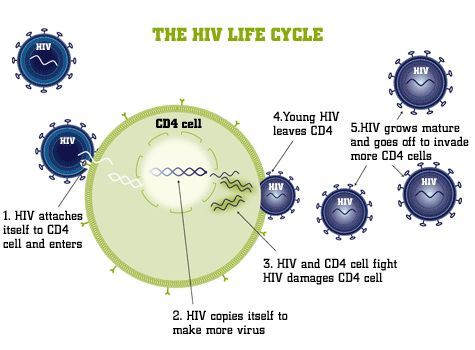 hiv images pictures | Donia Mustafa: September 2010