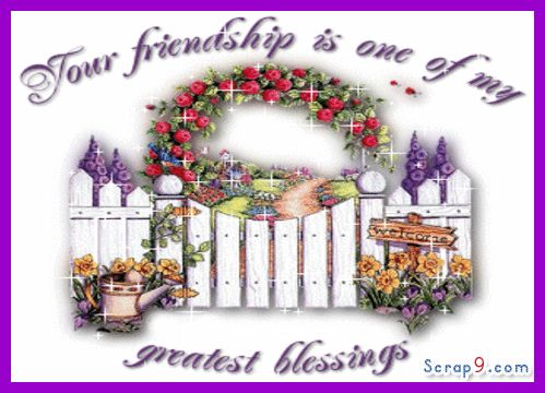 Quotes About Friendship Forever Pleasing 452 Best Greetings ↝ Friends Images On Pinterest  Friendship