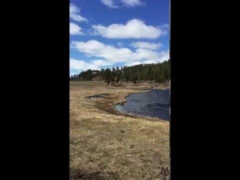 Firehole River, Fountain Flat, Yellowstone National Park