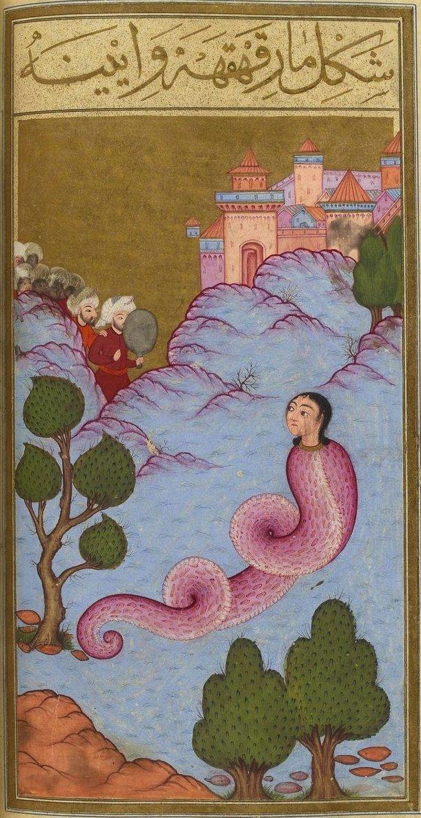 "Le Serpent Rieur (mar-ı kahkaha). Mehmed ibn Emir Hasan al-Su'ûdî, Matâli' al-su'âda wa yanâbi' al-siyâda (""Le livre du bonheur""), Istanbul (Turquie), 1582. BnF, département des Manuscrits, supplément turc 242, f. 90 v°"