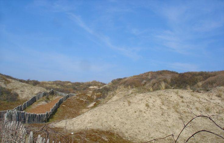 Les Dunes du Royon