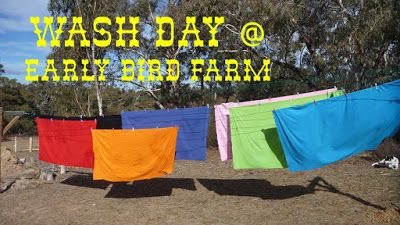 Early Bird Farm: Washing Part #2