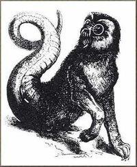 Amon - Demon Wiki - Wikia