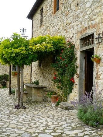 Photos of Borgo Argenina Bed and Breakfast, Gaiole in Chianti - Bed and Breakfast Images - TripAdvisor