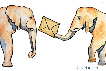 Elephants illustration