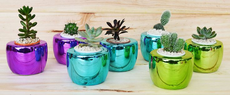 #irismetallics #handmade #planter #ceramic #succulents Shop our products at www.habibiplantitas.com