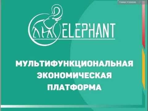 Конференция по развитию криптовалюты ElCoin | Элеврус