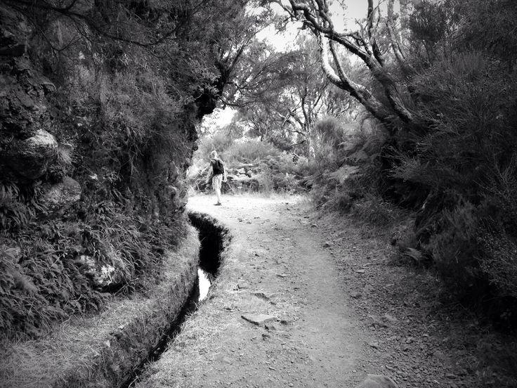 Madeira - foto met iPhone 4S