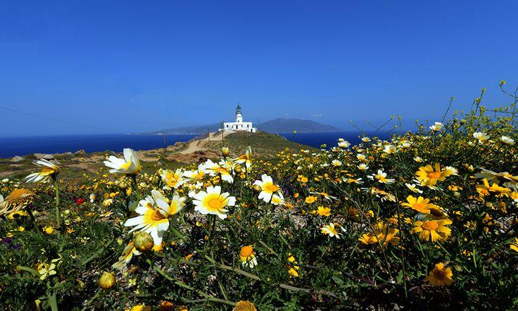 Lighthouse - mykonos