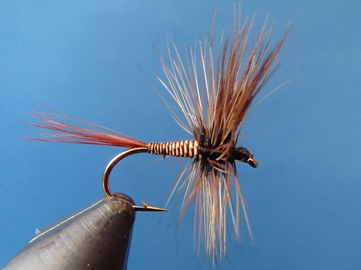 373 best dry flies images on pinterest fly tying patterns fishing and montages. Black Bedroom Furniture Sets. Home Design Ideas