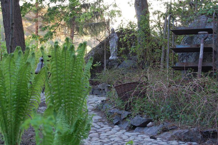 Woodland garden from a Finnish blog Marian koti ja puutarha. Beautiful ferns!
