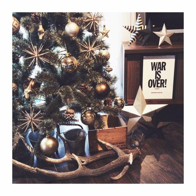 hellohellokatieさんの、星,飾り付け,クリスマスツリー,鹿の角,平屋,男前,ポスター,クリスマス,リビング,のお部屋写真