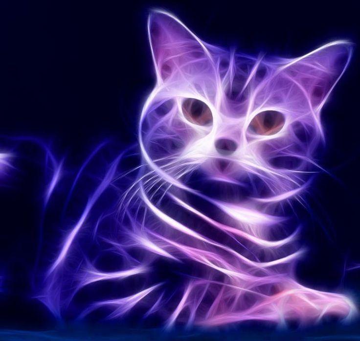 Purple fractal cat