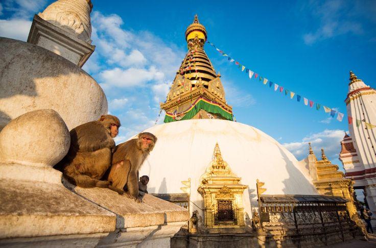 Eventyrlig Yoga- og Mindfulnessrejse til Nepal | 11. - 19. oktober 2016 - Smukke bjerglandskaber, stemningsfulde hindutempler, hellige mænd og farverige bedeflag, der sender bønner ud i universet. Tag med på en eventyrlig yoga- og mindfulnessrejse til Nepal med Pernille Kristensen fra Art of Living.