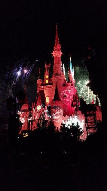 Mickey's not so scary fireworks! #Disney #DisneyWorld #MagicKingdom #NotSoScary #Orlando #Florida