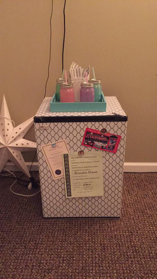 DIY mini fridge with contact paper!! Made by moi                              …