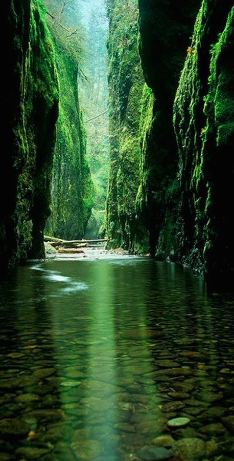 the Columbia River Gorge National Scenic Area east of