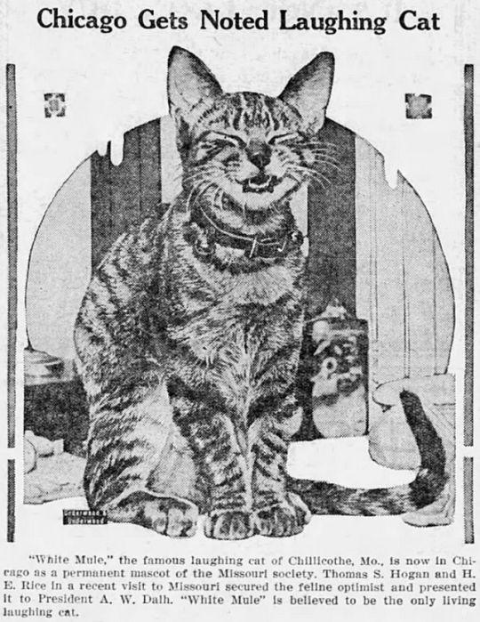 The Times_News, Nephi, Utah, 12/4/1925,