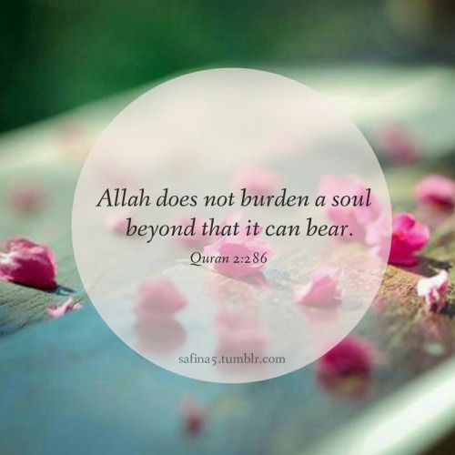 Allah doesn't give you more than you can bear.