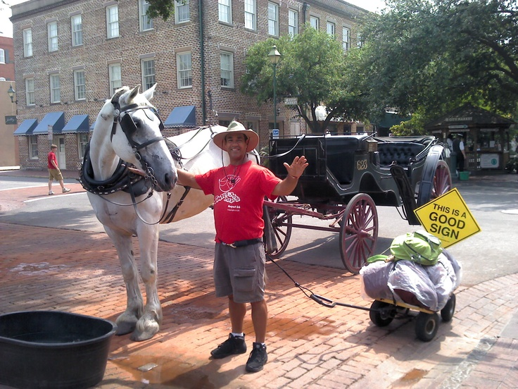 This horse and I are both dragging carts, me from Fl to NY City and him around Savannah Ga. What an experience it was to to share some time with a fellow walker, lol!!! The journey was 2,000 miles, 277 days and done with 200 dollars in my pocket! Never once sleeping under the stars and never going hungry. Learn more about the adventure at http://SmileAndWaveAmerica.com