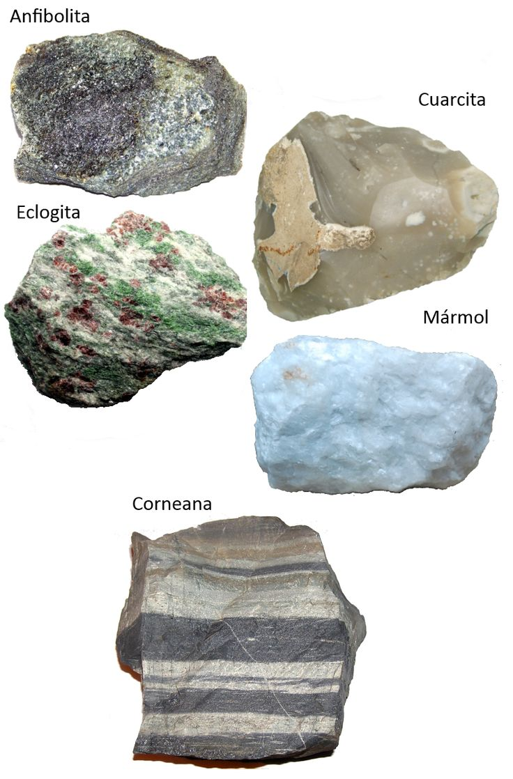 rocas+metamorficas.png (800×1216)