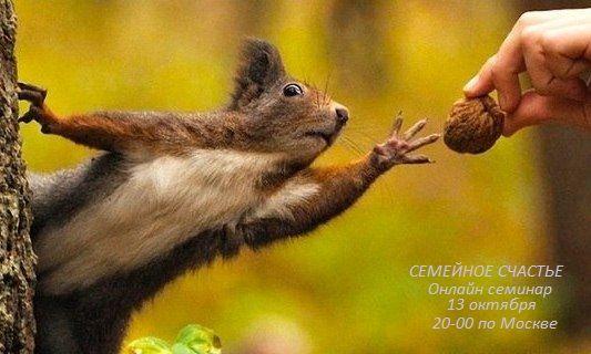 Отдавай не получая! Give without getting! https://goo.gl/ZmHPKy