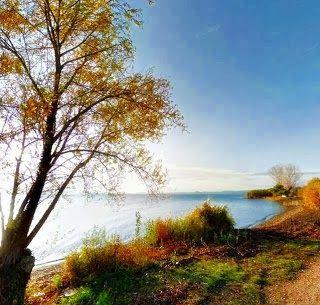 File:lago di Bolsena.jpg