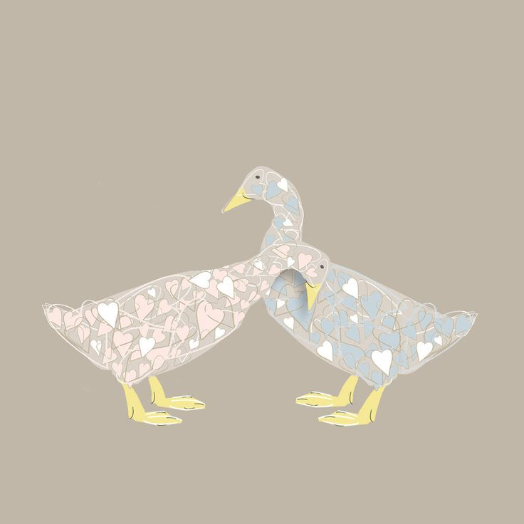 Sophie Morrell - Lucky Duckies £3.00 greeting card