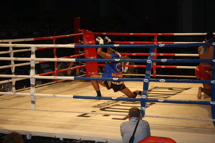 Muay Thai  Berlin