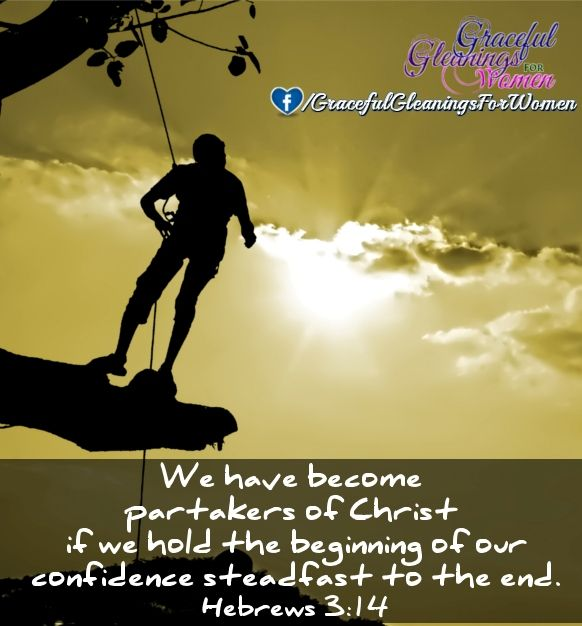 Follow Us http://www.facebook.com/gracefulgleaningsforwomen