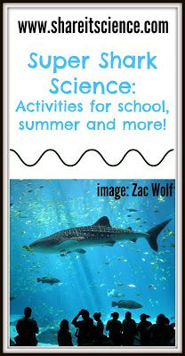 Share it! Science News : Psyched about Sharks?! Science activities for shark lov... 2
