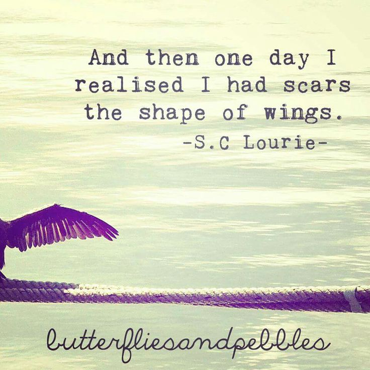 And Then One Day I Realised I Had Scars in the Shape of Wings