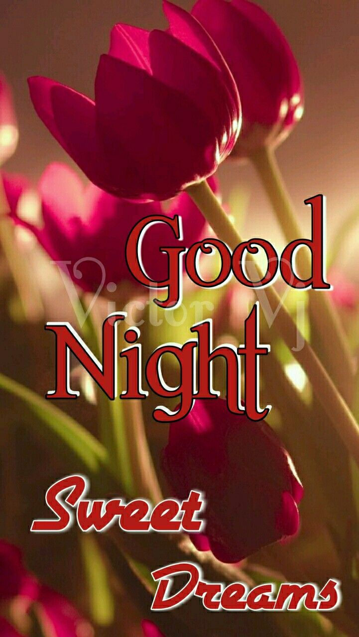 Pin By Jacqueline Pearson On Good Nighty Nite Good Night Image Good Night Beautiful Beautiful Good Night Images