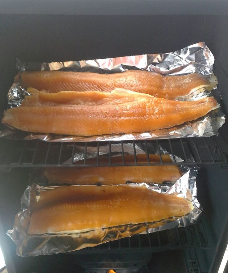 The 25 best lake trout recipes ideas on pinterest baked for Best fish to smoke