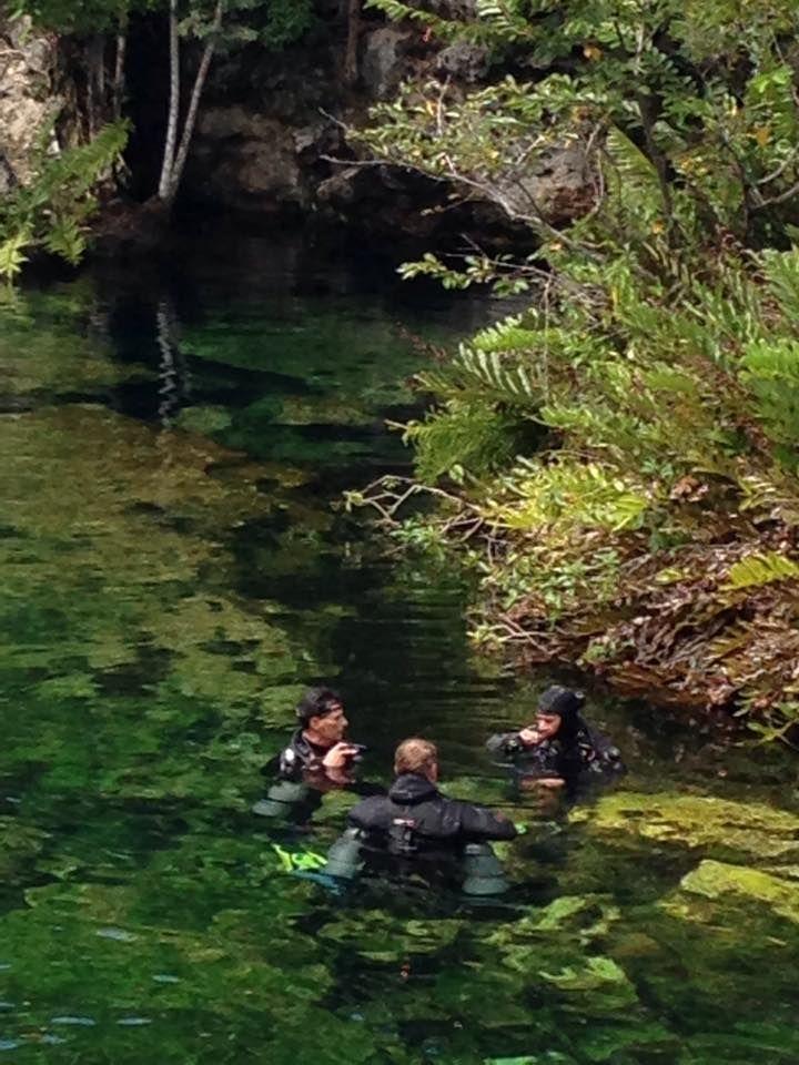 17 best images about cenote jardin de eden ponderosa on for Jardin eden