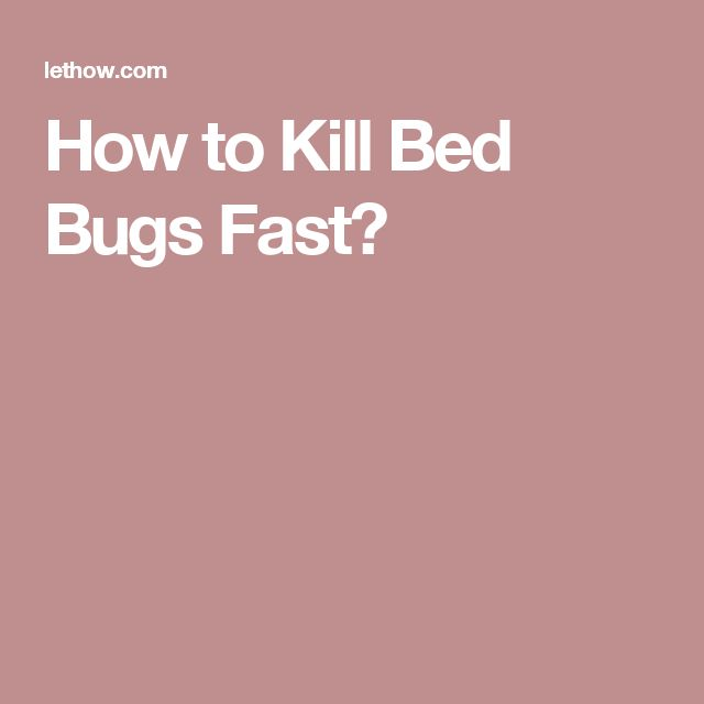 How to Kill Bed Bugs Fast?